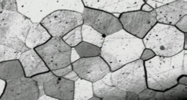 Analiza-Macroscopica-si-Microscopica